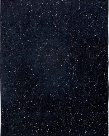 Louis De Poortere teppich Fischbacher 9059 Celestial Night Sky